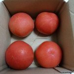 パルシステムのトマト500g